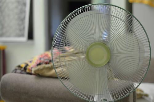 How Often Should I Clean My Standing Fan?